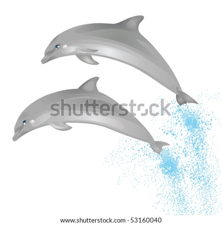 Two jumping dolphins isolated on a white background.