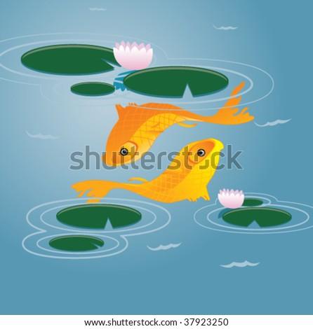 two koi fish resemble the
