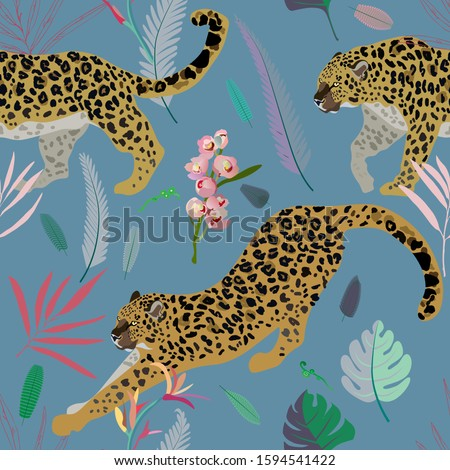 two leopards on a turquoise