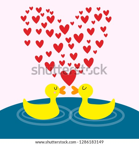 two lovers duck in the lake