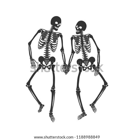 Two lovers of skeleton on the white background. Vector illustration
