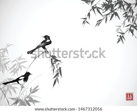 two magpie birds on bamboo