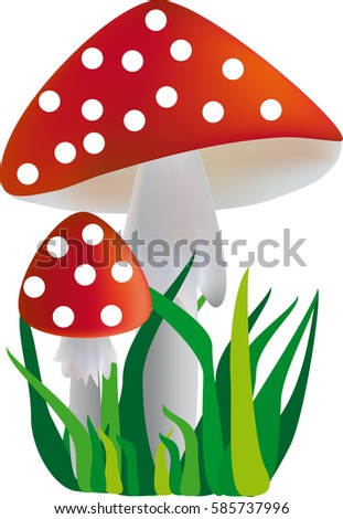 two mushroom with a red hat