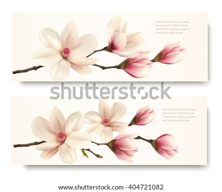 two nature flower magnolia