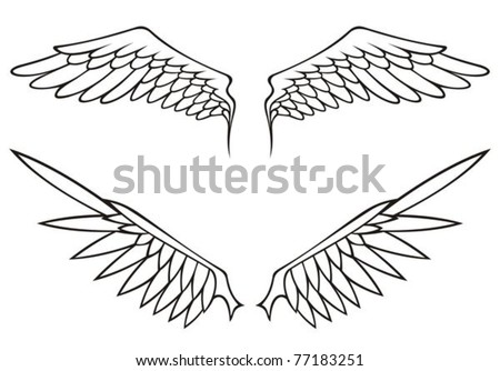 Two pairs of white open angel or bird wings isolated on white background.