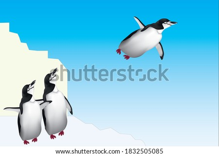 two penguin see to a flying