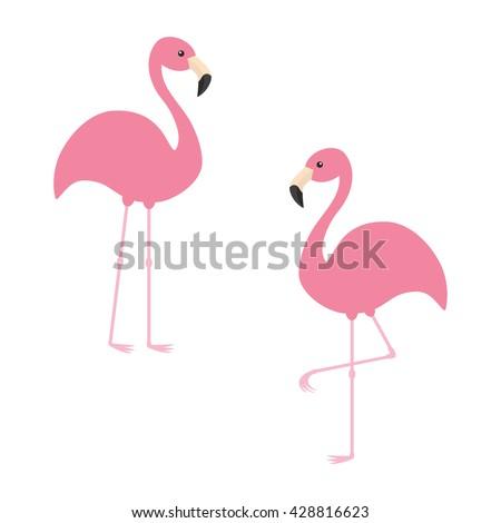 two pink flamingo set exotic