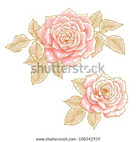 two pink roses with leaves
