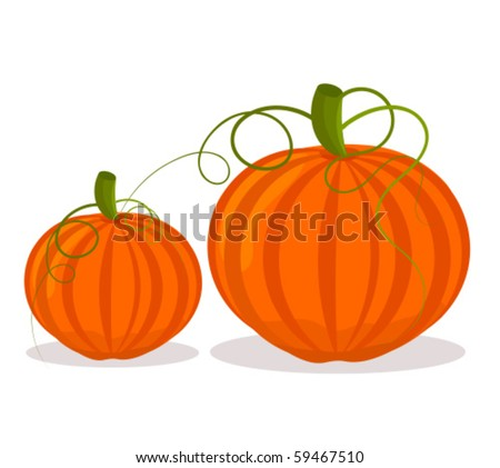 two pumpkins  big and small