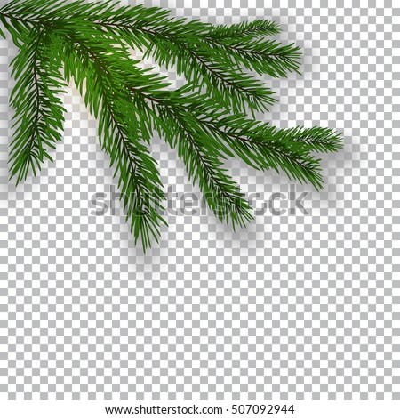 two realistic green tree branch
