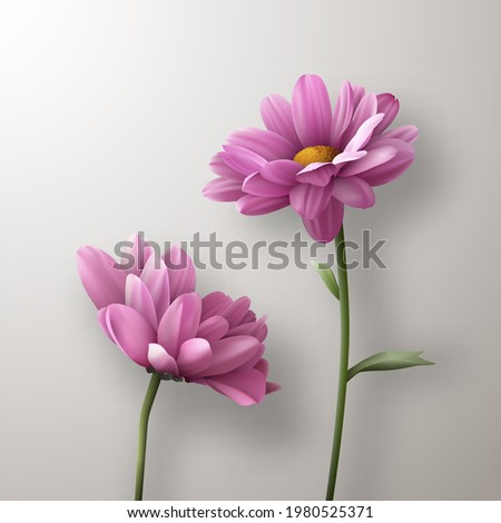 two realistic pink
