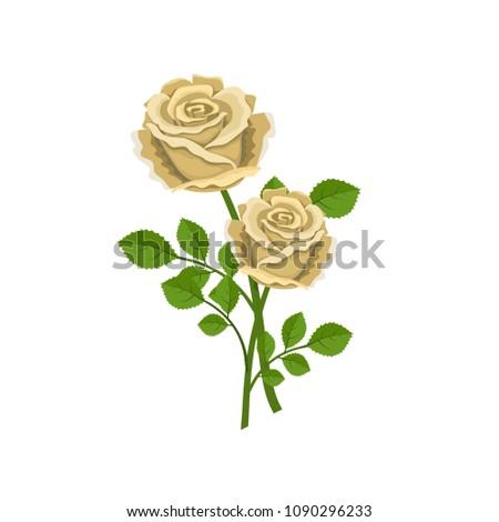 two realistic tea roses