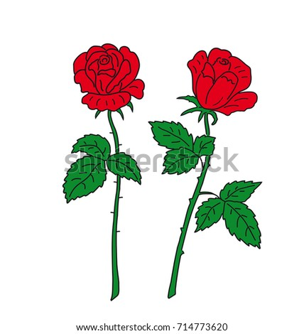 two red flower roses