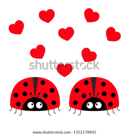 two red lady bug ladybird icon