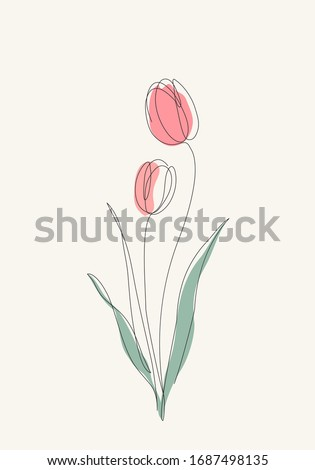 two red tulips flowers line