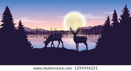 two reindeers by the lake at