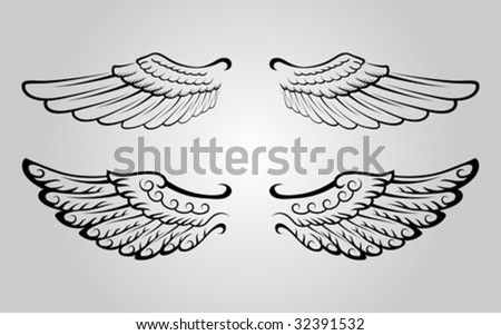 Two sets of wing vector