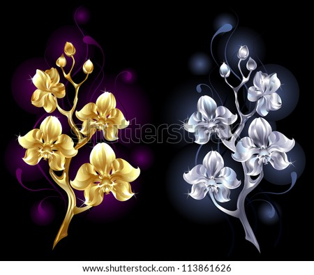 two shiny  jewelry orchids