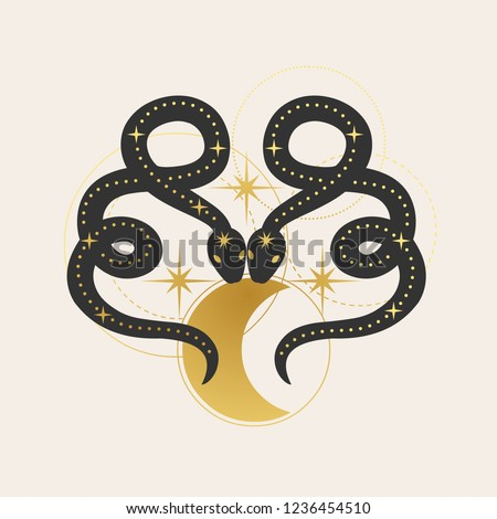 two snakes with moon vector