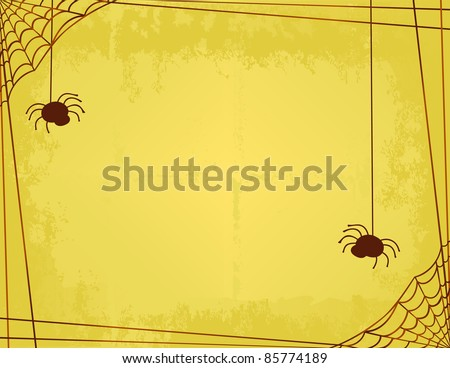 two spiders spinning a web