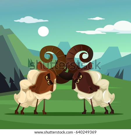 two stubborn angry ram sheep