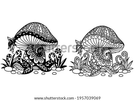 two styles of mushroom for