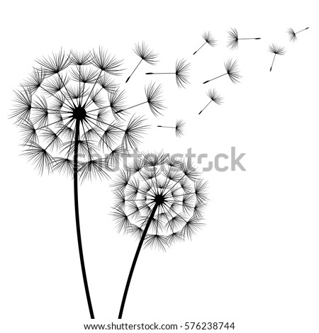 two stylized black dandelions