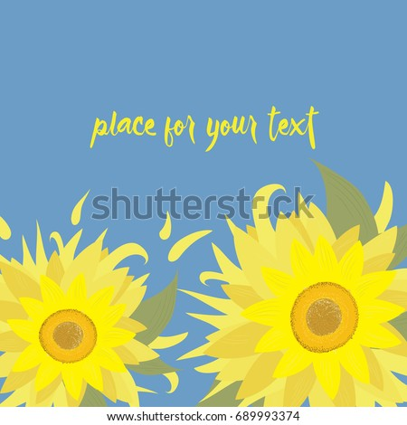 two sunflowers vector