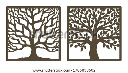 two trees in a square frame