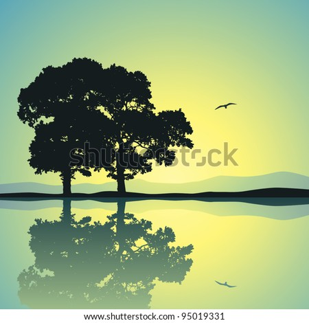 two trees standing alone with