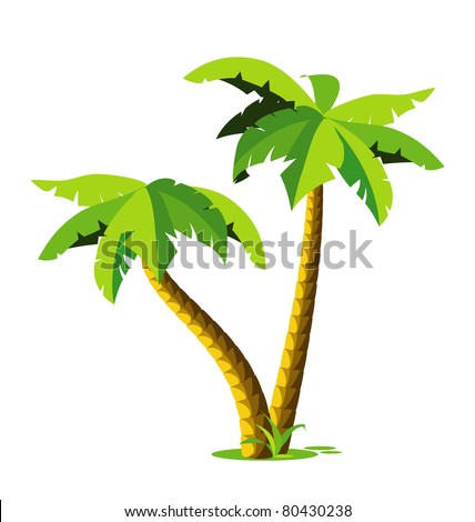 two tropical palm green color isolated