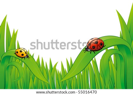 "Two vector Ladybugs, yellow and red colored on green grass, isolated on white. ""Full compatible. Created with gradients. Named in layers"""