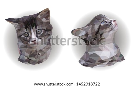 Two Cute Cats On White Background Download Free Vectors