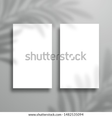 Two vertical blank cards with palm tree shadow. Mockup for design
