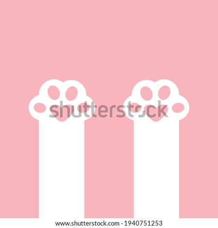 two white cat paw print leg