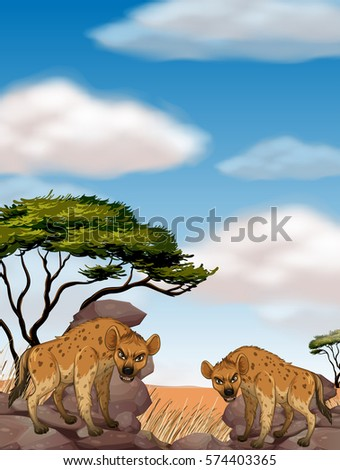 Two wild hyenas in the field illustration
