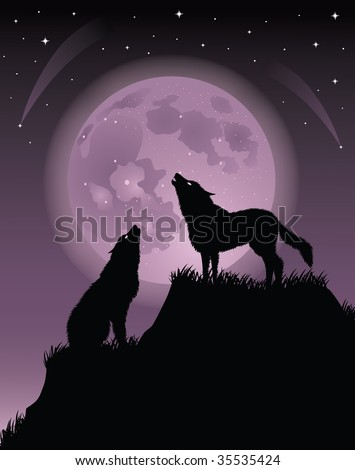 two wolfs standing on a hill