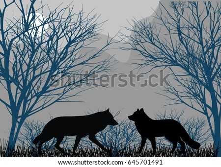 two wolves in forest in the