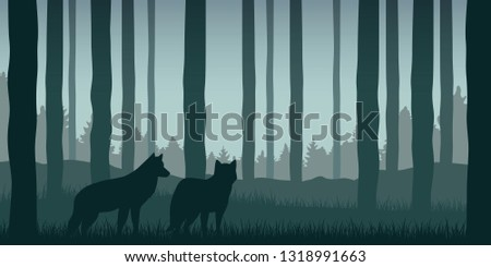 two wolves in green forest