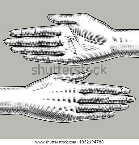 Two woman's hands palm down and palm up. Vintage engraving stylized drawing. Vector illustration