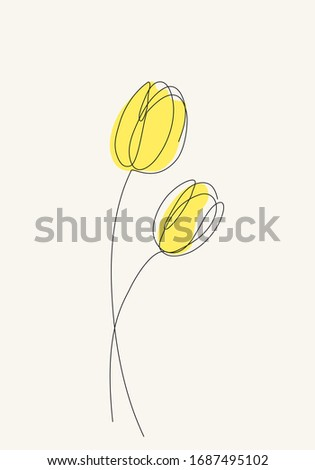 two yellow tulips flowers line