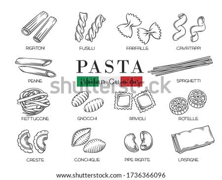 Types Italian pasta or macaroni, outline vector illustration. Italian food of ravioli, gnocchi, fettuccine and farfalle. Hand drawn pasta of fusilli, rotelle, create and conchiglie.
