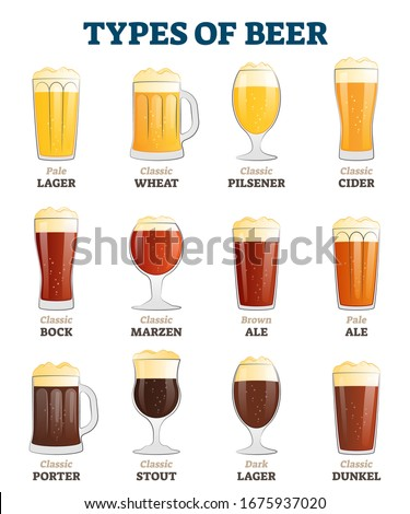 Types of beer vector illustration. Alcoholic beverage menu collection set. Labeled visualization with various glasses styles for lager, pilsener, ale, dunkel and porter drinks. Color comparison poster Сток-фото ©