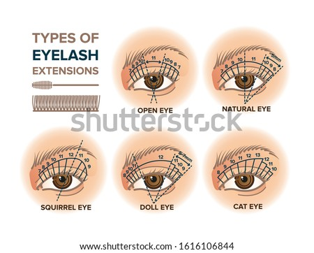 Types of eyelash extensions illustration for your design Foto stock ©