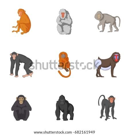 Types of orangutans icons set. Cartoon set of 9 types of orangutans vector icons for web isolated on white background