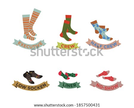 Types of socks set. No-show, low-cut. Socks with titles, vector illustration. Colorful funny Socks Set.