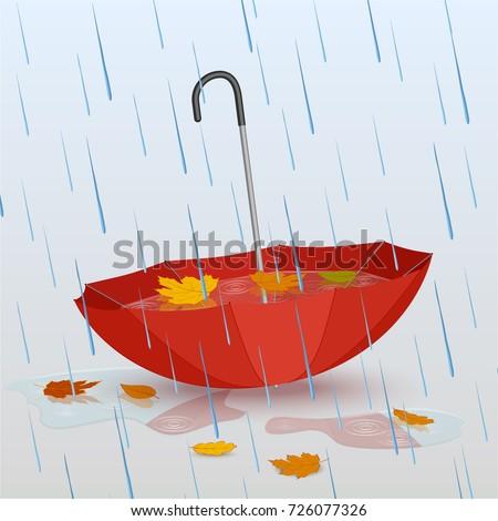 umbrella in the rain  puddles