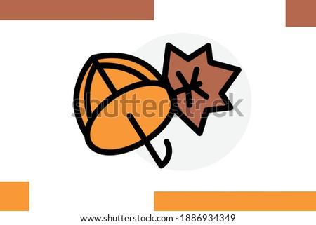 umbrella  leaf  nature  icon