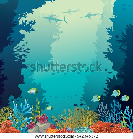 underwater coral reef and