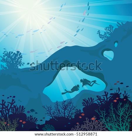 underwater marine wildlife